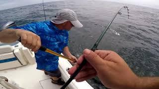 Montauk Fluke (Summer Flounder) Magic...Plus Real Magic!