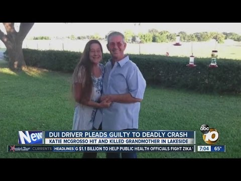 DUI driver pleads guilty to deadly crash