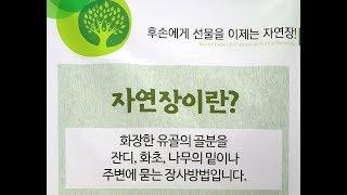 장례문화의 변화 - 자연장(自然葬)
