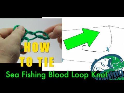 Sea Fishing Rig Guide - Blood Loop Dropper Knot