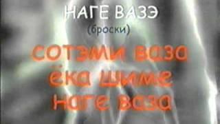 Видеоуроки приемов Джиу Джитсу