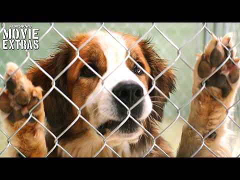 A Dog's Purpose release clip compilation (2017)