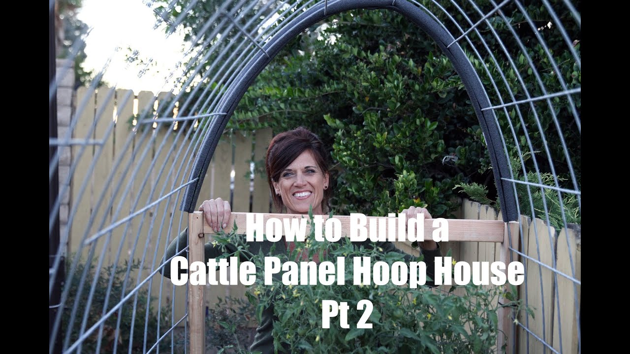 How I Built A Diy Cattle Panel Hoop House Part 2 Youtube
