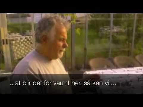 Fornybarfamilien video: Glasshuset på Friland