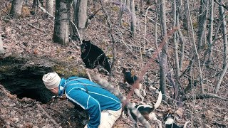 THE DOGS GO DEEP IN A MINE - Bear Hunting