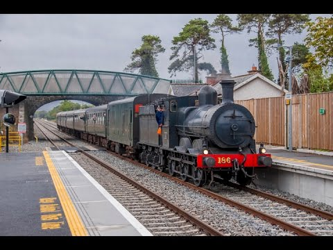 RPSI Province of Leinster Railtour  - Steam & Diesel