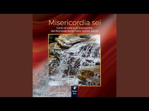 Misericordia sei (Canti di lode e di adorazione del Rinnovamento nello Spirito Santo)