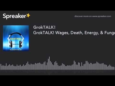 GrokTALK! Wages, Death, Energy, & Fungus