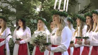 Finlands Lucia 2012 - Julia Hanhikoski
