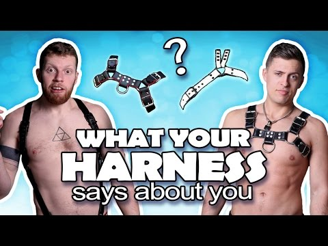 WHAT YOUR HARNESS MEANS!?