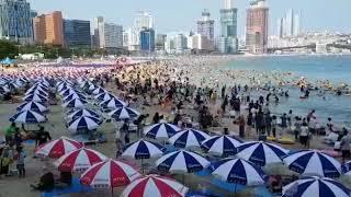Sangat ramai dan indahnya pantai hyundai busan dimusim panas korea selatan