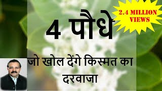 """Importance of Plants in Vaastu Shastra"" by Vaastu Expert 'Ummed Dugar Jain '"