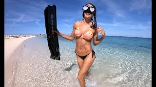 DIVING a mini Wreck in the BAHAMAS