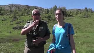 Gente di Montagna - Parco del Gran Bosco di Salbertrand, puntata del 18 luglio 2019