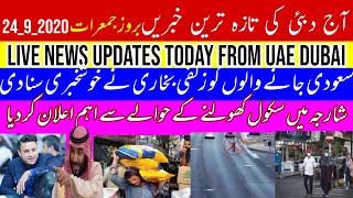 uae dubai abu dhabi sharjah urdu hindi news today    zulfi bukhari   good news for saudi visa holder