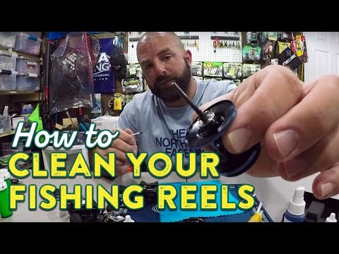 How To Effectively Clean Your Fishing Reels