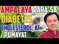 AMPALAYA: Para sa Diabetes, Cholesterol at Pumayat - by Doc Willie Ong #981