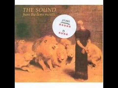 the sound - contact the fact