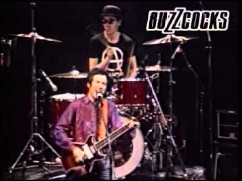 The Buzzcocks Live 1981
