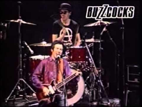 The Buzzcocks Live 1981