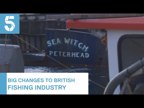 Will Brexit Restore The UK's Fishing Industry? | 5 News