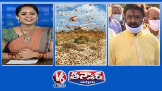 Locust Attack in Telangana | Corona not under control in TS | Balakrishna Comments | V6 Teenmaar