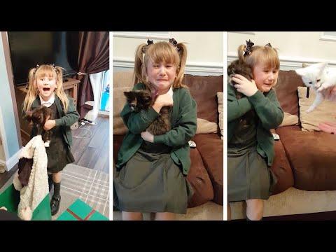 Adorable Girl Gets Kittens For Birthday