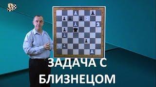 Перемена игры в двухходовке, циклическое чередование матов и задача-близнец (урок 25)