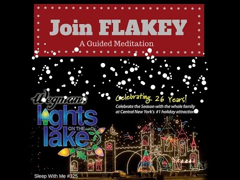 Lights on the (Formally Most Polluted) Lake with Flakey | A Guided Meditation | Sleep With Me #325