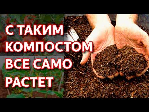 Как приготовить правильный компост. Компост самое натуральное удобрение для вашего сада.