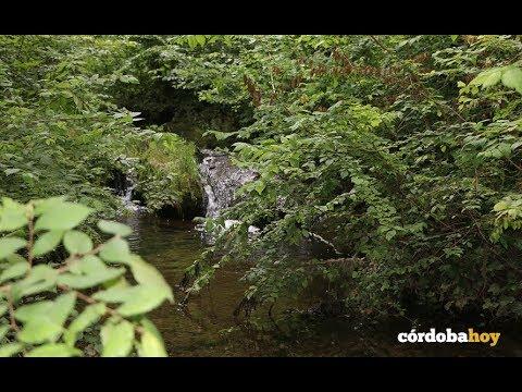 Baños de Popea: El lugar donde desapareció un niño de 13 años