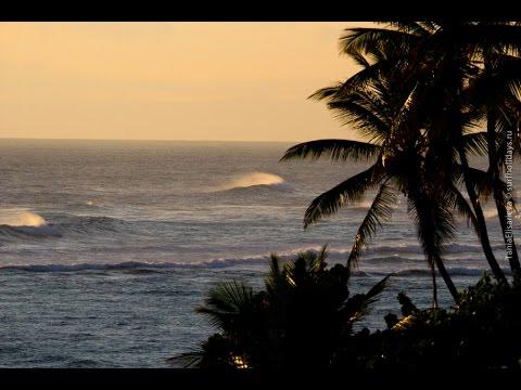 Surfing in Dominican Republic [Surfholidays, серфинг]