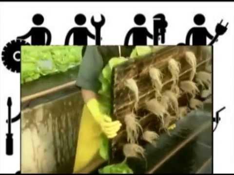 видео: ГИДРОПОНИКА,  КАК ЭТО СДЕЛАНО , ЧТО ТАКОЕ ГИДРОПОНИКА