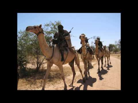 Darfur Conflict Video