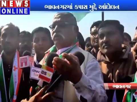 movement on cotton prices in Bhavnagar