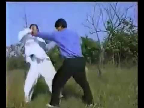 王新华 擒拿 Wang Xinhua Arm lock. Kung Fu.Chin Na