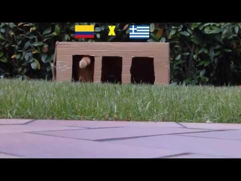 BRAZIL 2014 : COLOMBIA - GREECE 3-0