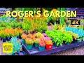 Roger's Garden Nursery | Farmhouse | Succulent Garden | 4K Walking Tour