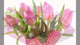 Поздравление с 8 марта. Видео-открытка.