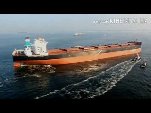 Biggest Bulk Carrier in the World MS Ore Brasil Vale Brasil