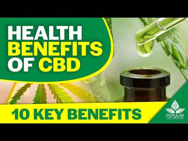 10 Health Benefits of CBD   Research Based [2019]