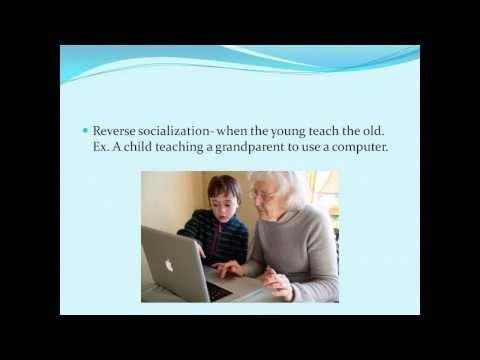Sociology Part 5: Socialization
