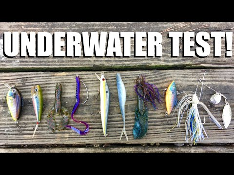 Which lure style looks best in stained water?