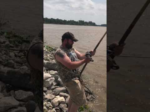 Alligator Gar Arkansas River 4-29-17
