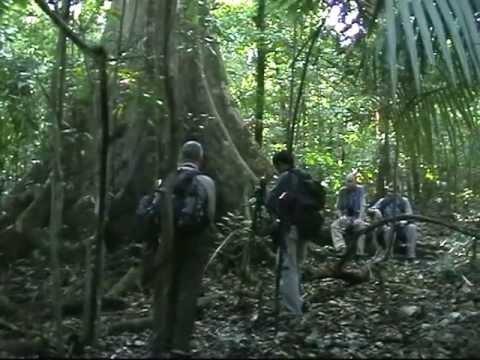 Sulawesi 2011 Part 2
