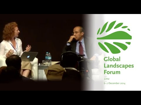 Closing plenary dialogue: Financing sustainable landscapes