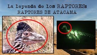 RAPTORES Parte 1: Raptores de Atacama | Criptozoología