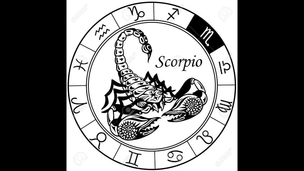 Astrology scorpio sun signsun in scorpio october 24th november astrology scorpio sun signsun in scorpio october 24th november 22nd youtube buycottarizona Image collections