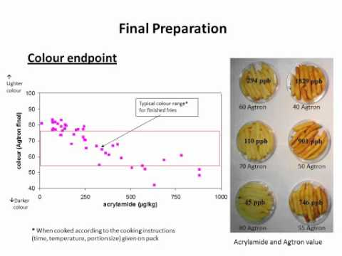 EUPPA Acrylamide reduction in French fries Webinar