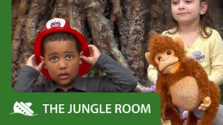 The Jungle Room - Spills